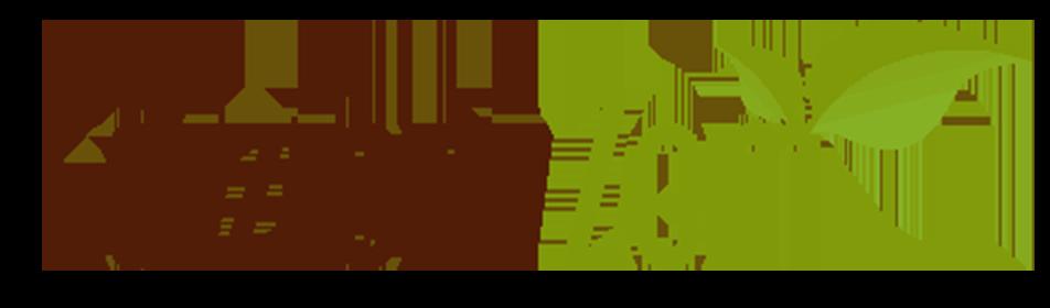 Casa Editrice Edizioni Zem